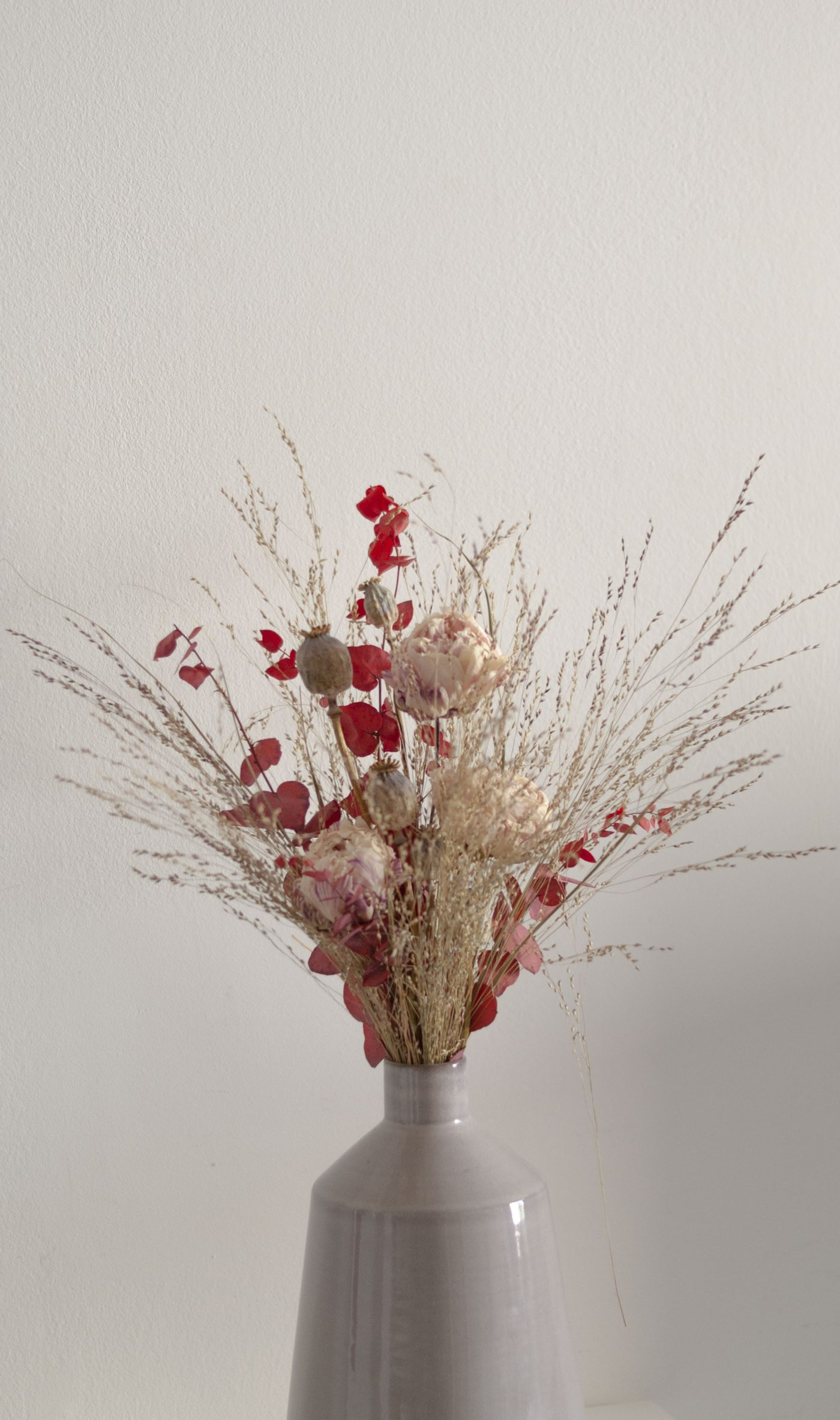 fleurs lyophilisées fleurs séchées